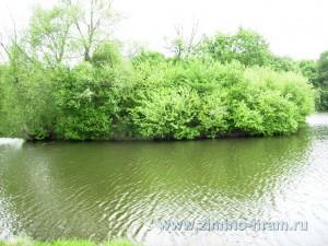 Фотография озеро возле усадьбы